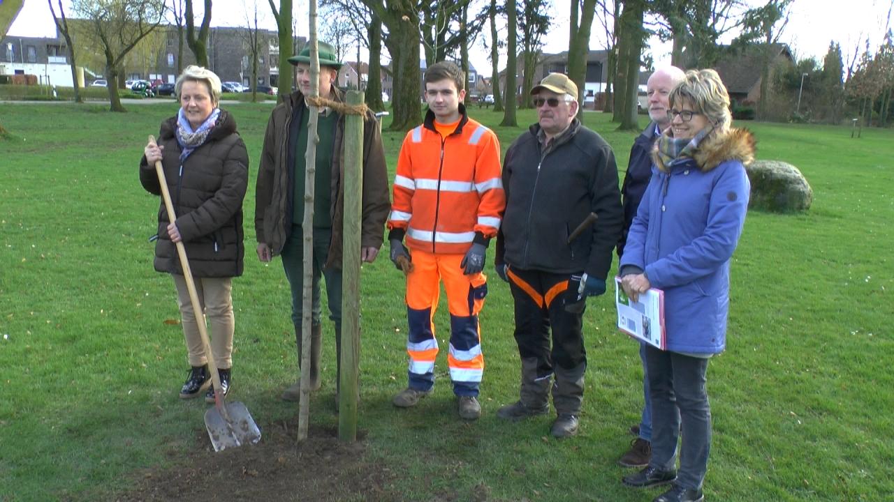 Schutzgemeinschaft Deutscher Wald spendet Robinie für Dülmen