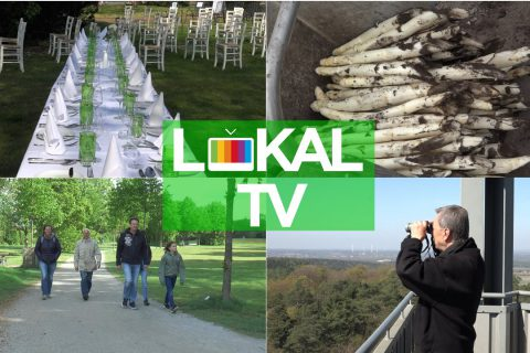 Monatsjournal Lokal TV April / Mai 2020