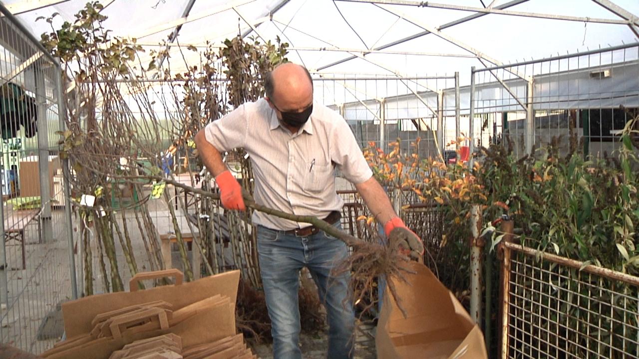 Stadt Dülmen spendet Bäume und Sträucher an Dülmener